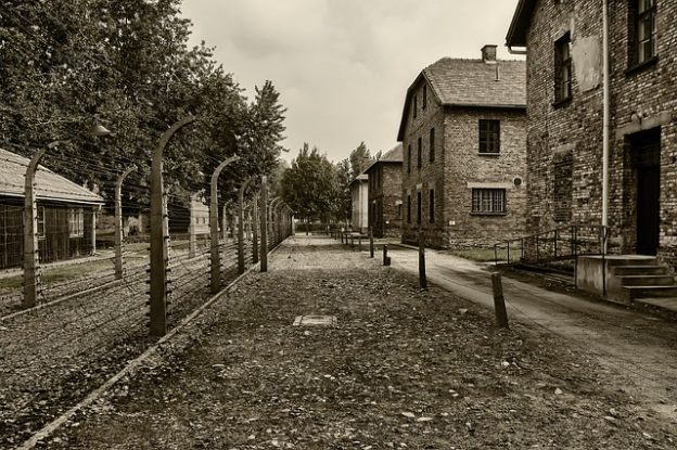 פיצויים בגין פשעי הנאצים
